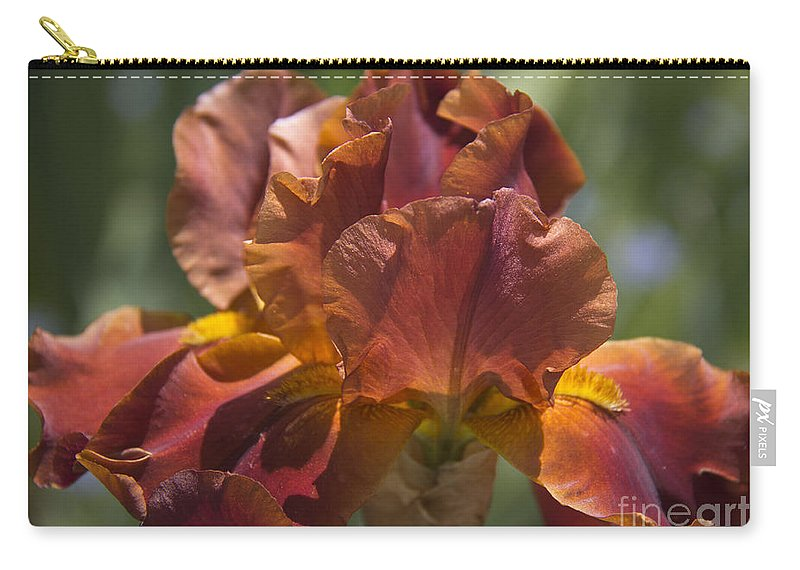 Iris Carry-all Pouch featuring the photograph Copper Gem by Teresa Mucha