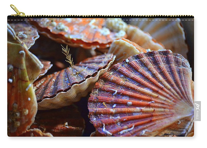 Chell Carry-all Pouch featuring the photograph Coquilles Saint Jaques by Riad Belhimer