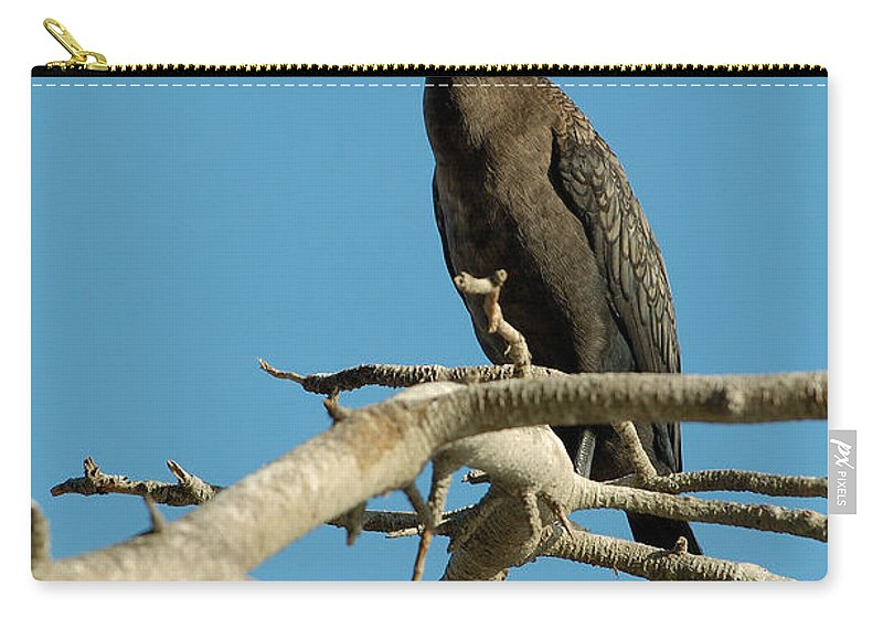 Cormorants Carry-all Pouch featuring the photograph Cormorant by Sebastian Musial