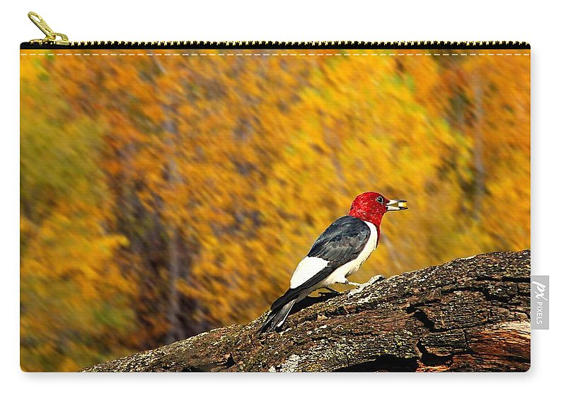 Red Headed Woodpecker Carry-all Pouch featuring the photograph Corn Fed Woodpecker by Elizabeth Winter