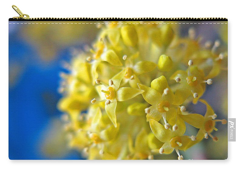 Cornelian Cherry Carry-all Pouch featuring the photograph Cornelian Cherry. Cornus Mas. European Cornel by Ausra Huntington nee Paulauskaite