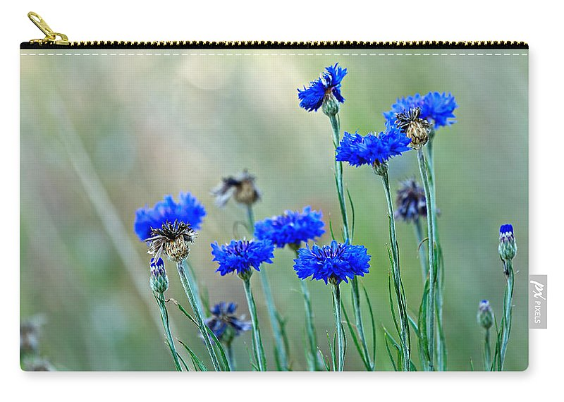 Cornflower Carry-all Pouch featuring the photograph Cornflowers by Louise Heusinkveld