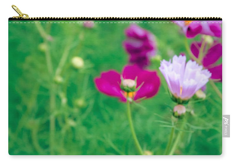 Cosmos Carry-all Pouch featuring the photograph Cosmos by Sharon Mau