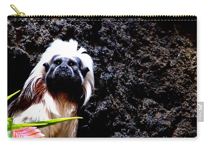 Patzer Carry-all Pouch featuring the photograph Cotton Top Tamarin by Greg Patzer