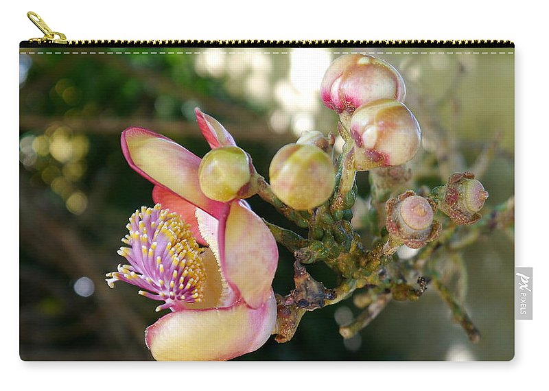 Cannonball Tree Flowers Carry-all Pouch featuring the photograph Couroupita Guianensis - Cannonball Tree Flowers by Christiane Schulze Art And Photography