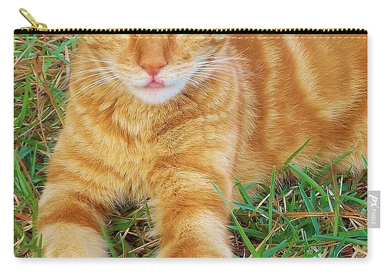 Kitty Carry-all Pouch featuring the photograph Covered In Orange by Matthew Seufer