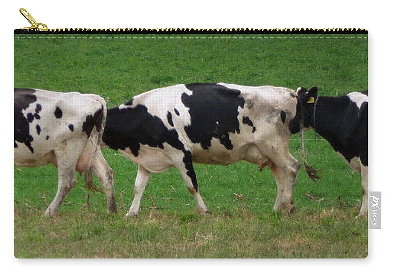 Joseph Skompski Carry-all Pouch featuring the photograph Cow Path by Joseph Skompski