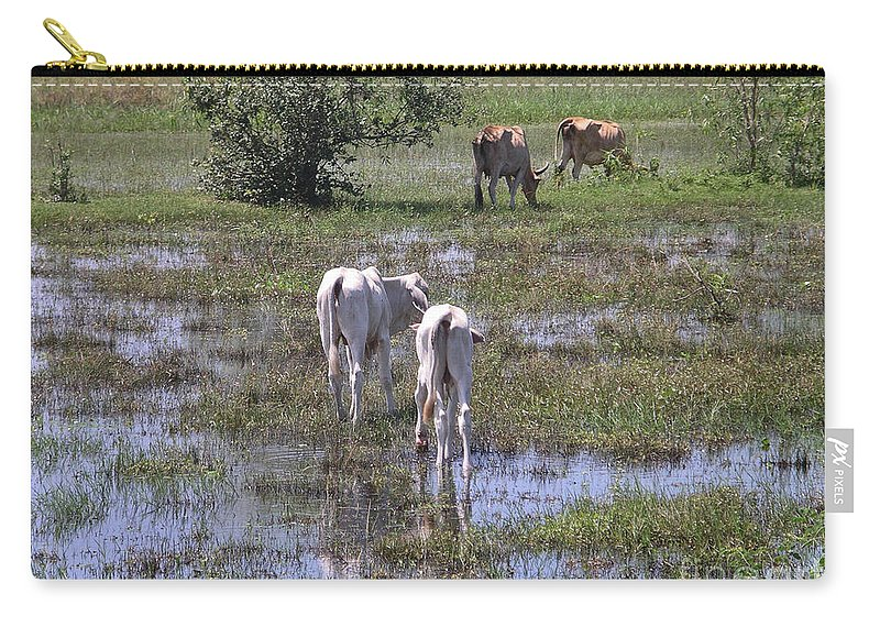 Animals Carry-all Pouch featuring the digital art Cows In The Pantanal by Carol Ailles