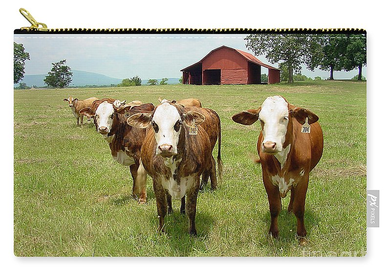 Cow Carry-all Pouch featuring the photograph Cows8931 by Gary Gingrich Galleries