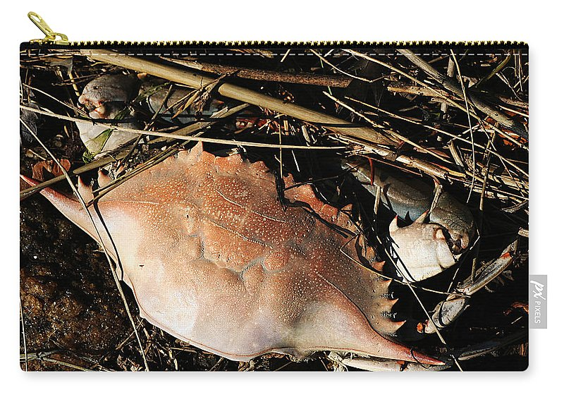 Still Life Carry-all Pouch featuring the photograph Crab Shell by William Selander