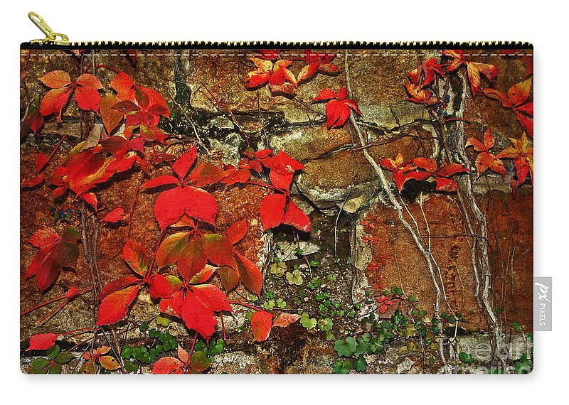 Brick Wall Carry-all Pouch featuring the photograph Crawling The Walls by Beth Ferris Sale