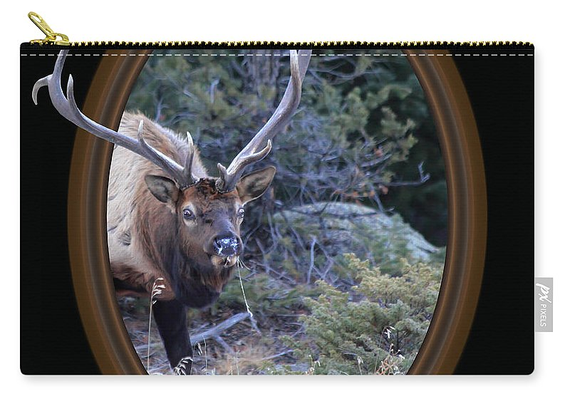 Colorado Carry-all Pouch featuring the photograph Crazy Eyes by Shane Bechler