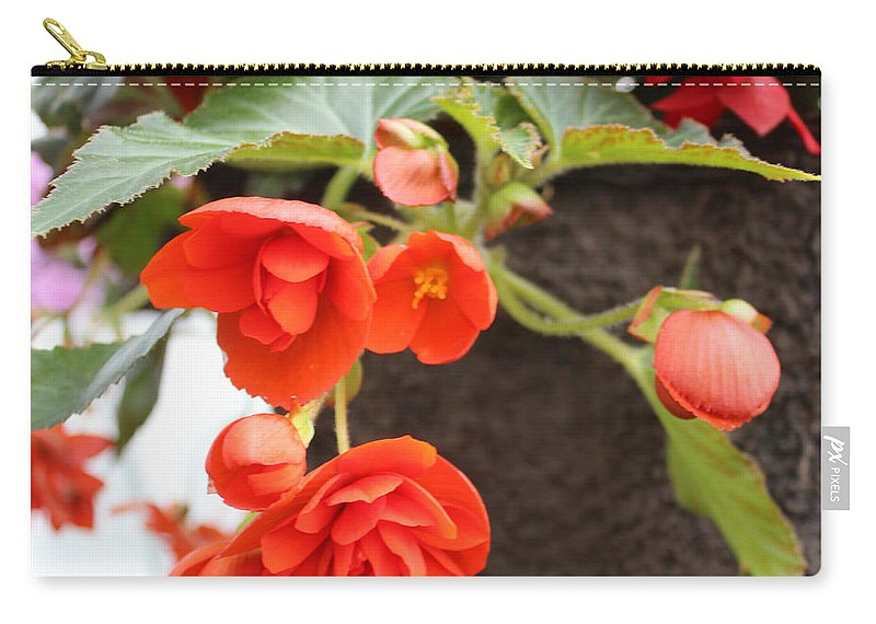 Orange Begonia Carry-all Pouch featuring the photograph Creamsicle by Sylvia Thornton