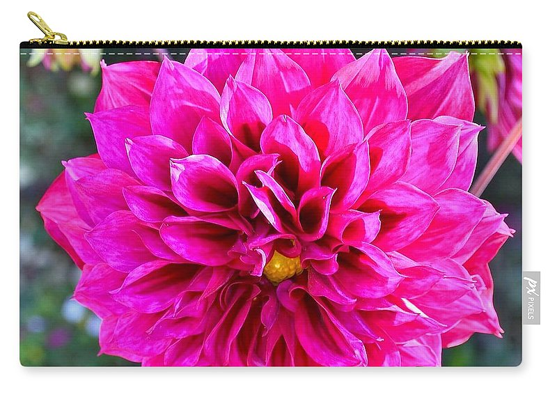 Pink Flower Carry-all Pouch featuring the photograph Creation by Kim Bemis