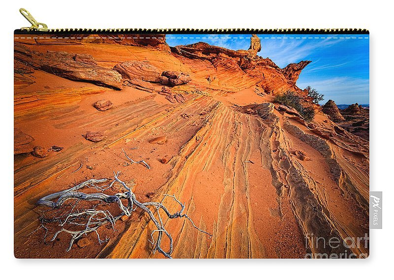 America Carry-all Pouch featuring the photograph Creeping Branches by Inge Johnsson