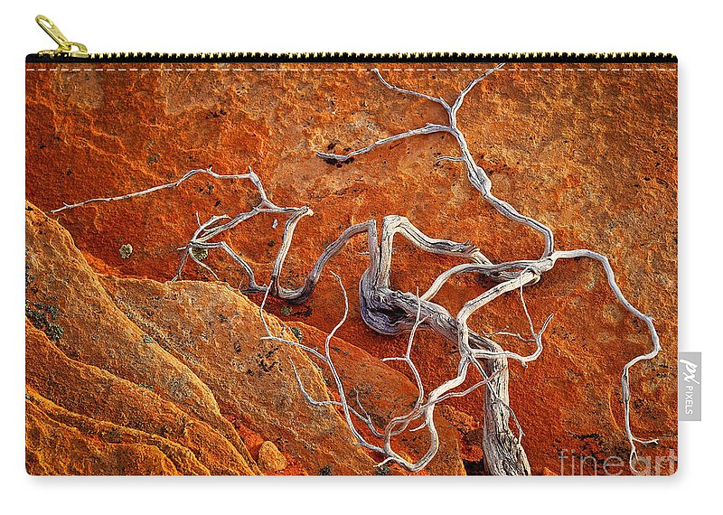 America Carry-all Pouch featuring the photograph Creepy Crawly by Inge Johnsson