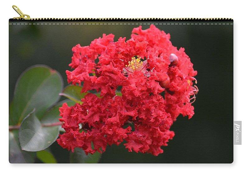 Crimson Crape Carry-all Pouch featuring the photograph Crimson Crape by Maria Urso