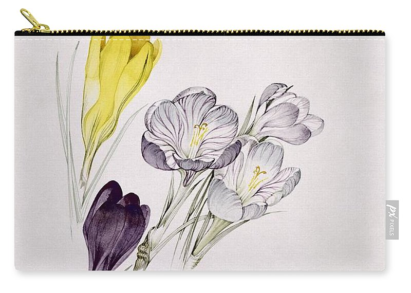Crocus Carry-all Pouch featuring the painting Crocus by Sarah Creswell