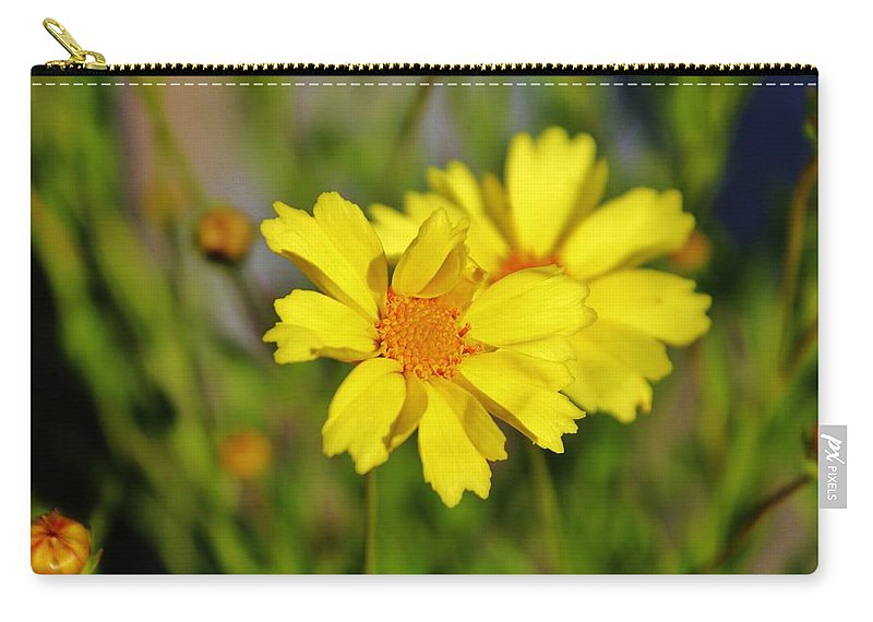 Daisy Carry-all Pouch featuring the photograph Crown Daisies by Cynthia Guinn