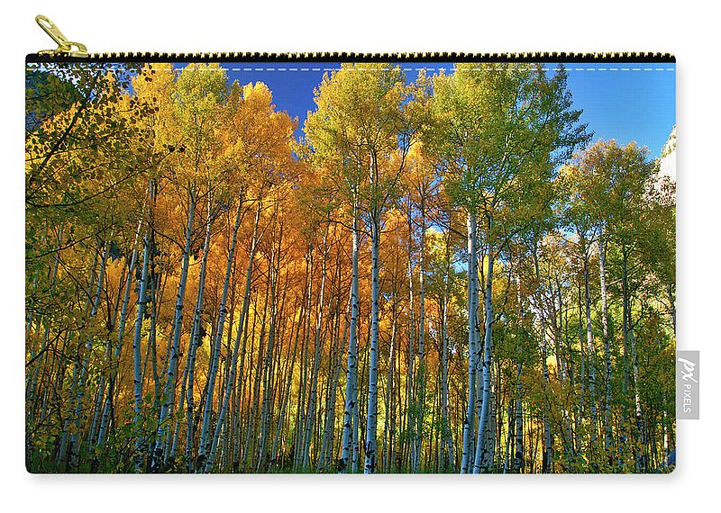 Fall Colors Carry-all Pouch featuring the photograph Crystal Grove by Jeremy Rhoades