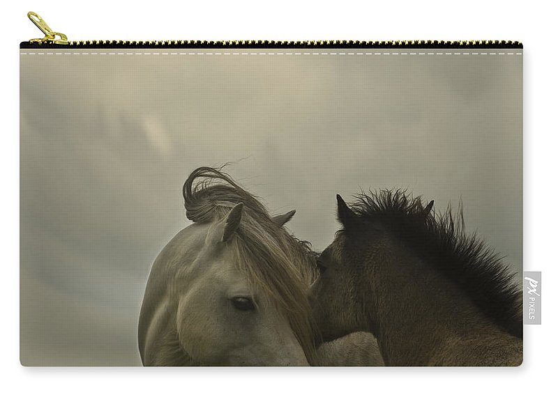 Horses Carry-all Pouch featuring the photograph Cuddle Me by Angel Ciesniarska
