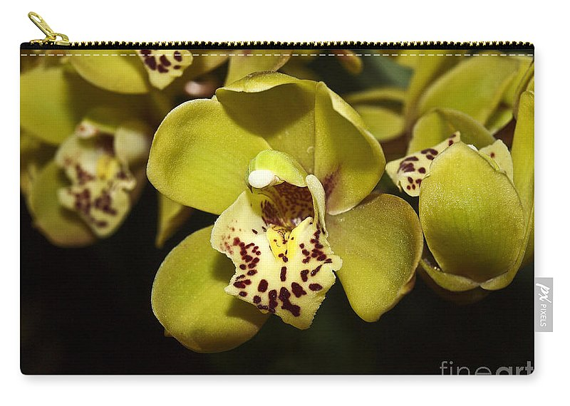 Cymbidium Orchid Carry-all Pouch featuring the photograph Cumbidium Orchid by Howard Stapleton