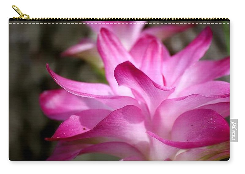 Lilies Carry-all Pouch featuring the photograph Curcuma by Debra Forand