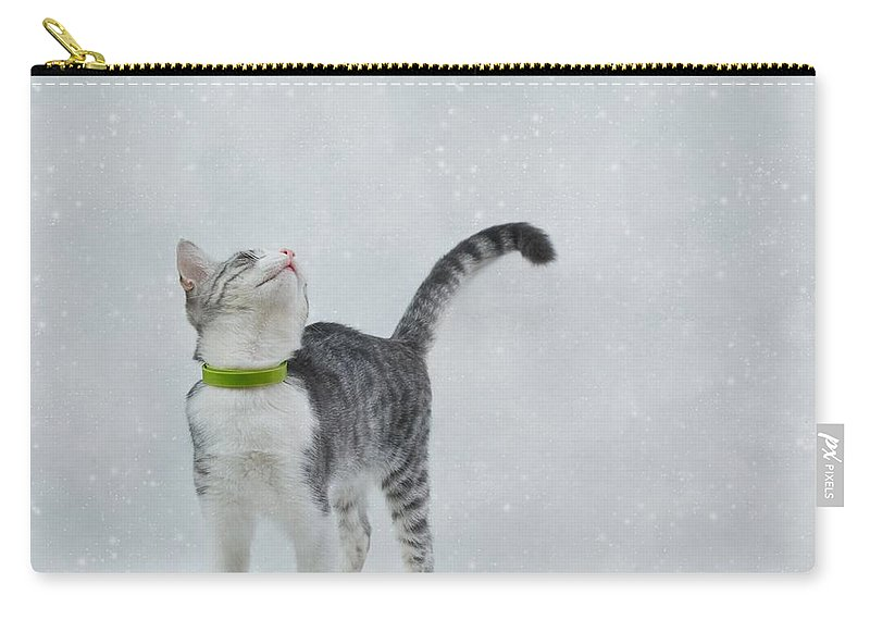 Cat Carry-all Pouch featuring the photograph Curious Cat by Sonya Kanelstrand