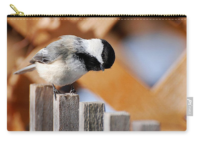Bird Carry-all Pouch featuring the photograph Curious Chickadee by Christina Rollo