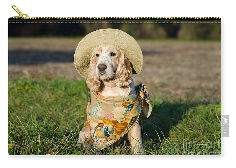 Dog Carry-all Pouch featuring the photograph Cute Dog by Mats Silvan