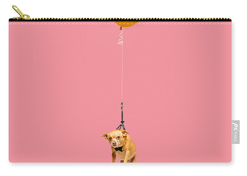 Pets Carry-all Pouch featuring the photograph Cute Dog Tied To A Balloon And Floating by Ian Ross Pettigrew