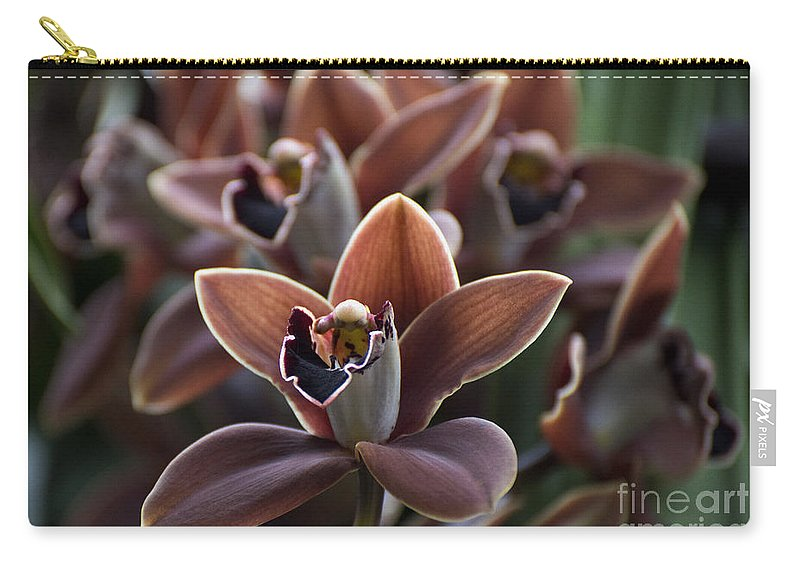 Brown Orchid Carry-all Pouch featuring the photograph Cymbidium Edith Mcdade 'new Horizon'  2035 by Terri Winkler