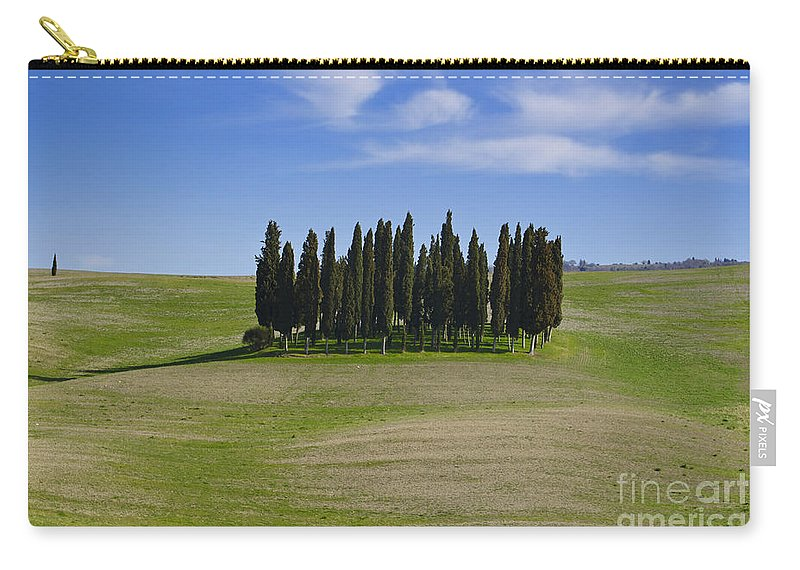 Cypress Carry-all Pouch featuring the photograph Cypress Trees by Mats Silvan