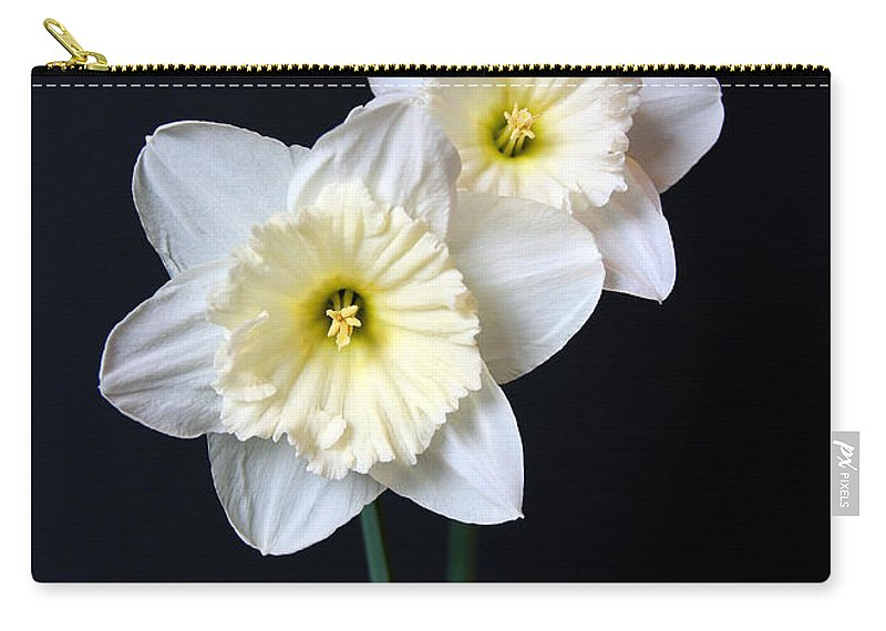 Daffodil Carry-all Pouch featuring the photograph Daffodil Flowers Still Life by Jennie Marie Schell