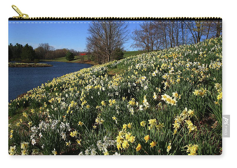 Daffodil Carry-all Pouch featuring the photograph Daffodil Hill by Karol Livote