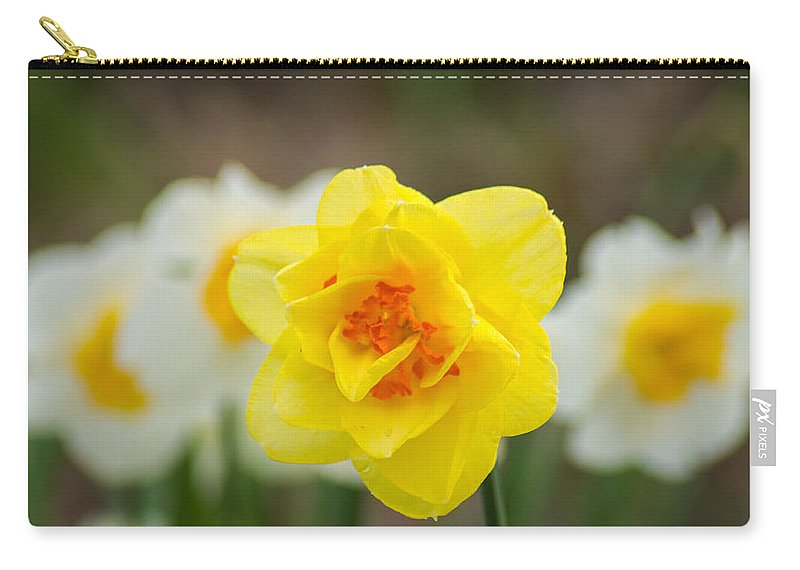 White Carry-all Pouch featuring the photograph Daffodil Standout by Bill Pevlor