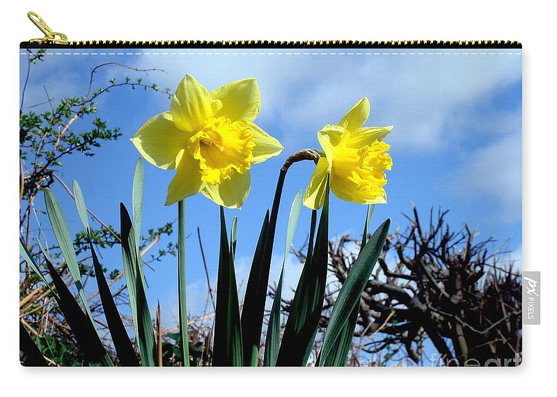 Daffodils Carry-all Pouch featuring the photograph Daffodils 2 by John Chatterley