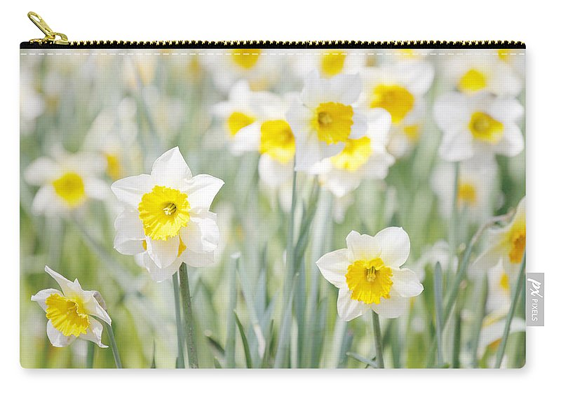 Plants Carry-all Pouch featuring the photograph Daffodils by Steve Ball