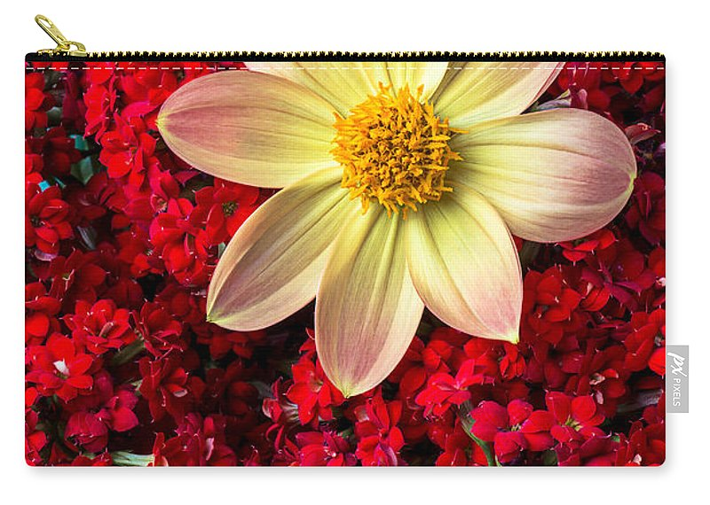 Dahlia Carry-all Pouch featuring the photograph Dahlia And Kalanchoe by Garry Gay