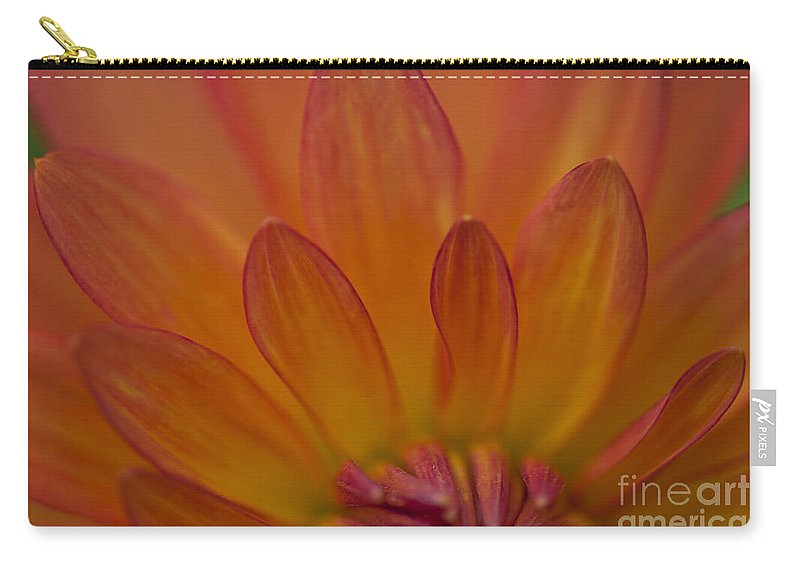 Heiko Carry-all Pouch featuring the photograph Dahlia Closeup by Heiko Koehrer-Wagner