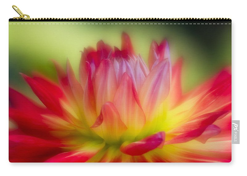 Red Flower Carry-all Pouch featuring the photograph Dahlia Color Explosion by Greg Nyquist