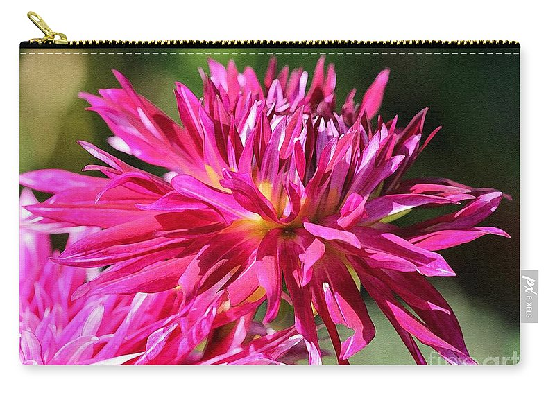 Mccombie Carry-all Pouch featuring the painting Dahlia Named Normandy Wild Willie by J McCombie