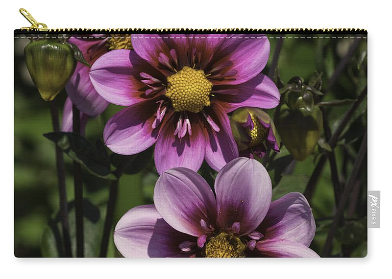 Abstract Carry-all Pouch featuring the photograph Dahlia Trio by Joe Geraci