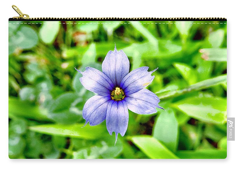 Nature Carry-all Pouch featuring the photograph Dainty Blue by Art Dingo