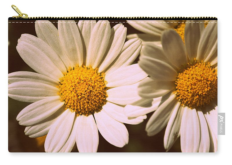Flower Carry-all Pouch featuring the photograph Daisies by Chevy Fleet