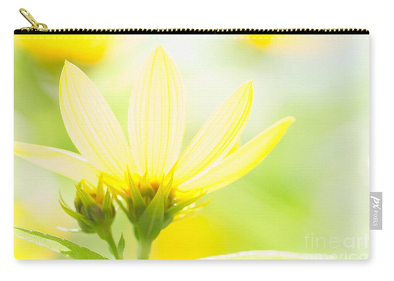Flower Carry-all Pouch featuring the photograph Daisies In The Sun by David Perry Lawrence
