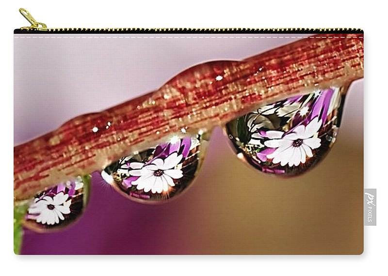 Photography Carry-all Pouch featuring the photograph Daisy Droplets by Kaye Menner