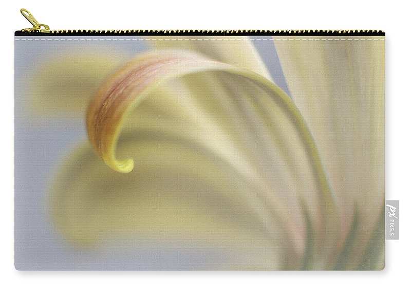 Abstract Carry-all Pouch featuring the photograph Daisy Impression Number Two by David and Carol Kelly