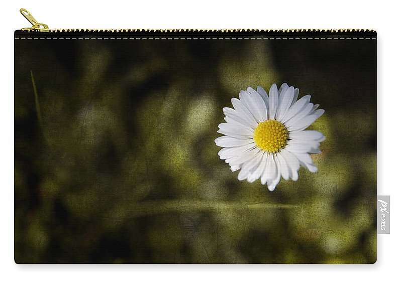Background Carry-all Pouch featuring the photograph Daisy by Steve Ball