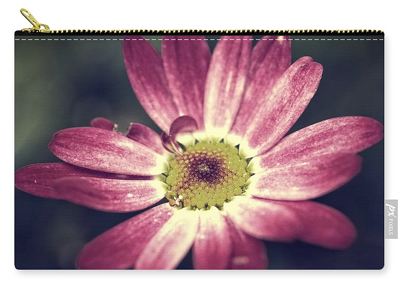 Aroma Carry-all Pouch featuring the photograph Daisy by TouTouke A Y